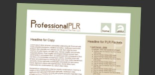 professionalplr-featured